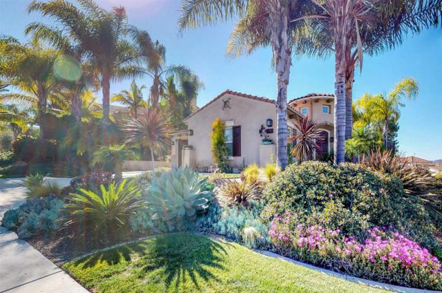 3280 Avenida La Cima, Carlsbad, CA 92009 (#180006803) :: The Houston Team | Coastal Premier Properties