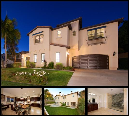 2824 Carrillo Way, Carlsbad, CA 92009 (#180007166) :: The Houston Team | Coastal Premier Properties
