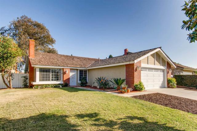 736 Point Sur, Oceanside, CA 92058 (#180007409) :: Whissel Realty