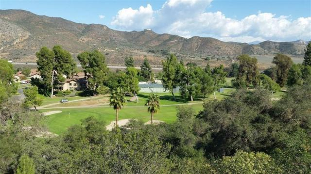 00 Tecalote Dr #60, Fallbrook, CA 92028 (#180008505) :: Neuman & Neuman Real Estate Inc.