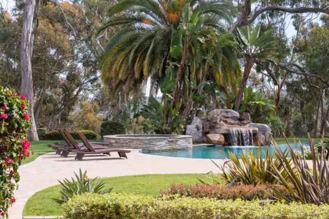 15146 Las Planideras, Rancho Santa Fe, CA 92067 (#180008829) :: Neuman & Neuman Real Estate Inc.