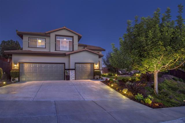 12215 Mannix Rd, San Diego, CA 92129 (#180009135) :: The Houston Team | Coastal Premier Properties