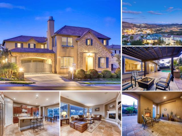 3220 Corte Tamarindo, Carlsbad, CA 92009 (#180009430) :: The Houston Team   Coastal Premier Properties