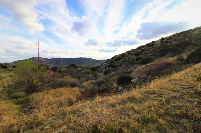 0 Grapevine Canyon Rd. #0, Ranchita, CA 92066 (#180009733) :: Ascent Real Estate, Inc.