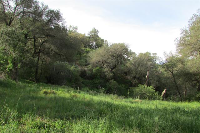 Mountainbrook Road #76, Santa Ysabel, CA 92070 (#180010008) :: The Yarbrough Group