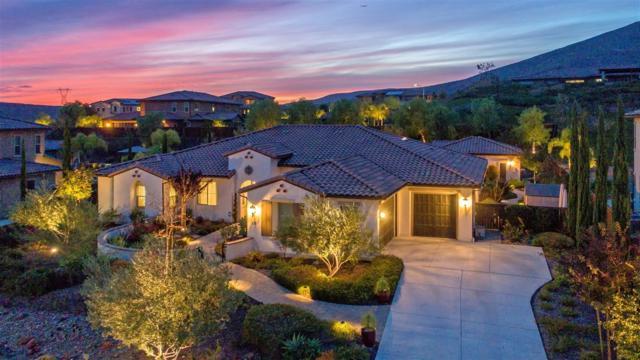 470 Agua Vista Drive, Chula Vista, CA 91914 (#180010485) :: Douglas Elliman - Ruth Pugh Group