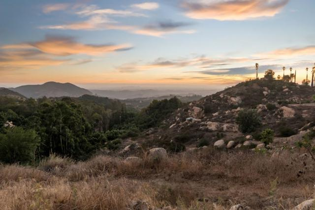 6189 Rainbow Heights Rd Lot B B, Fallbrook, CA 92028 (#180010552) :: The Yarbrough Group