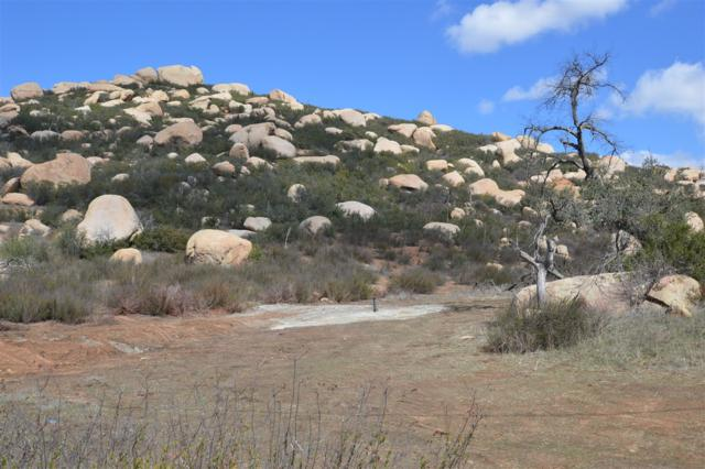 48 Acres Mother Grundy Truck Trail #18, Jamul, CA 91935 (#180010656) :: Impact Real Estate
