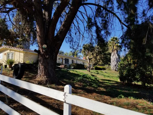 225 Laurine Ln, Fallbrook, CA 92028 (#180010782) :: Beachside Realty