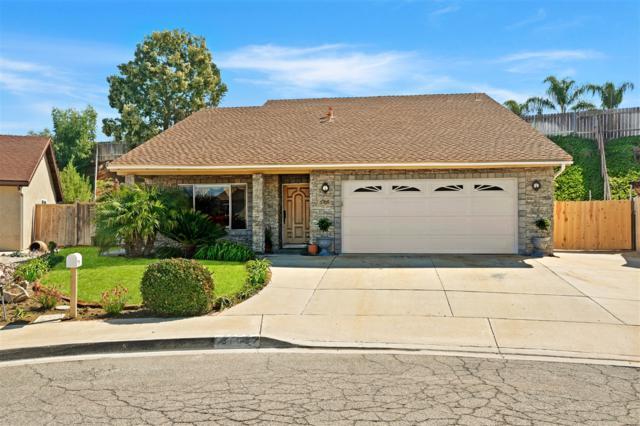 3705 Avenida Johanna, La Mesa, CA 91941 (#180010916) :: The Houston Team | Coastal Premier Properties