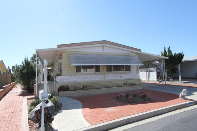 37987 Via La Colina, Murrieta, CA 92563 (#180011000) :: The Yarbrough Group