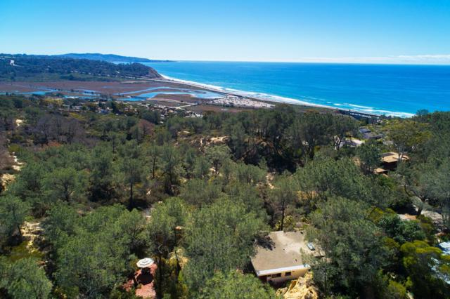 461 & 465 Hidden Pines Lane, Del Mar, CA 92014 (#180011315) :: The Yarbrough Group