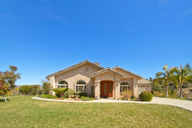 255 Patton Oak Rd, Fallbrook, CA 92028 (#180012369) :: The Houston Team | Coastal Premier Properties