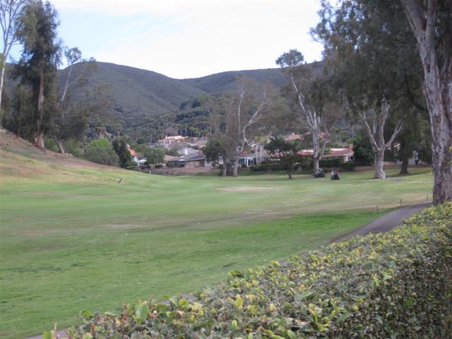 1067 San Pablo Drive, San Marcos, CA 92078 (#180013191) :: Beachside Realty