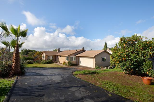 245 Shetland Way, Fallbrook, CA 92028 (#180013777) :: The Houston Team | Coastal Premier Properties