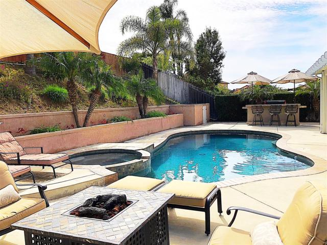 3559 Quail View St, Spring Valley, CA 91977 (#180014119) :: The Yarbrough Group