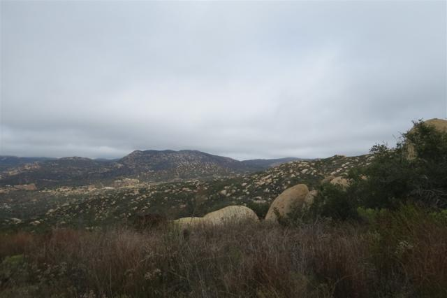 1690 Mother Grundy Truck Trail #10, Jamul, CA 91935 (#180016451) :: Impact Real Estate