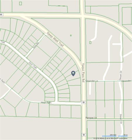 52 Yaqui Pass #52, Borrego Springs, CA 92004 (#180016947) :: Keller Williams - Triolo Realty Group