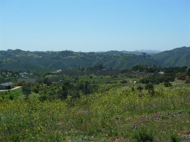 Via Del Gavilan 1 #1, Fallbrook, CA 92028 (#180018152) :: Neuman & Neuman Real Estate Inc.