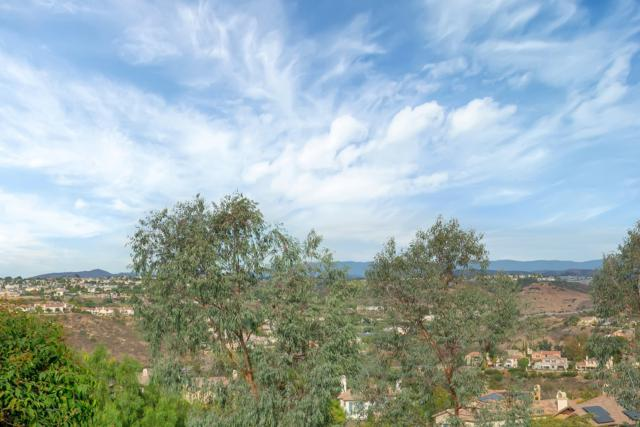 1971 Swallow Ln, Carlsbad, CA 92009 (#180019378) :: Neuman & Neuman Real Estate Inc.