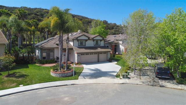 1235 Orchard Glen Circle, Encinitas, CA 92024 (#180019432) :: Neuman & Neuman Real Estate Inc.