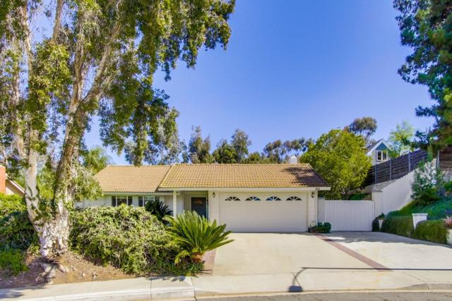 441 Sutter Ct, San Marcos, CA 92069 (#180019889) :: Whissel Realty