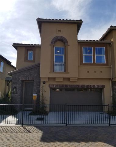 3173 Salina Road, Carlsbad, CA 92010 (#180020633) :: The Houston Team   Coastal Premier Properties