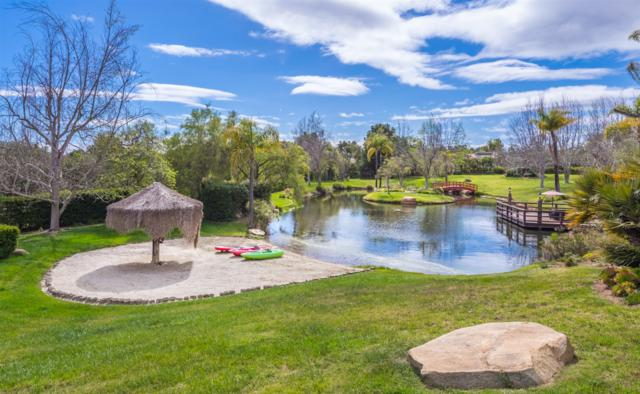 5 Golden Meadow Ln, Fallbrook, CA 92028 (#180020763) :: Whissel Realty