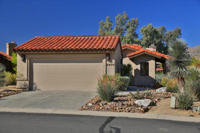 2950 Roadrunner Dr S, Borrego Springs, CA 92004 (#180020885) :: Ghio Panissidi & Associates