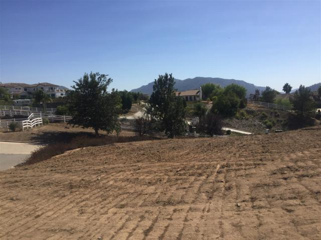 30908 SW Lolita Road B,G,2, Temecula, CA 92592 (#180021170) :: Neuman & Neuman Real Estate Inc.