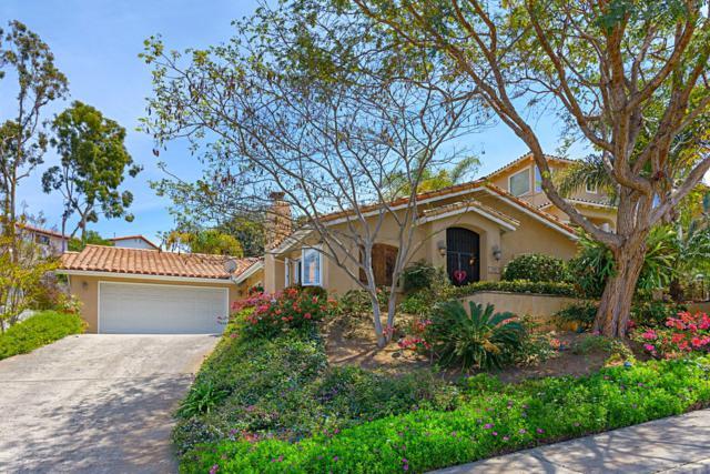 7624 Nueva Castilla Way, Carlsbad, CA 92009 (#180021370) :: Allison James Estates and Homes