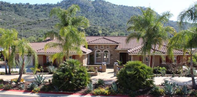 14737 Interlachen Ter, Valley Center, CA 92082 (#180022378) :: Ascent Real Estate, Inc.