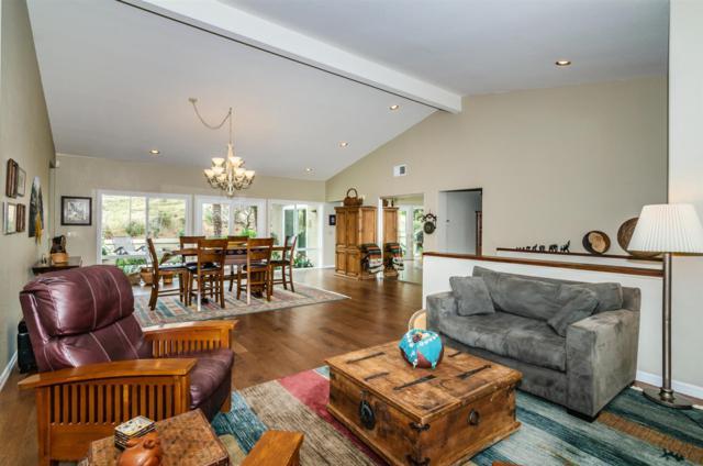 65 Via Larga Vista, Bonsall, CA 92003 (#180023460) :: The Houston Team | Coastal Premier Properties