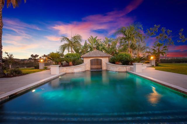 14121 Caminito Vistana, San Diego, CA 92130 (#180023787) :: Heller The Home Seller