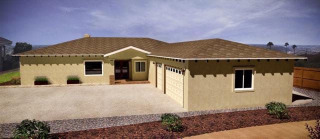 3146 Roadrunner Rd, San Marcos, CA 92078 (#180025229) :: The Houston Team   Coastal Premier Properties