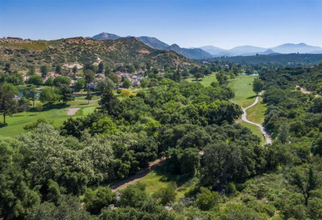 15703 Vista Vicente Dr, Ramona, CA 92065 (#180025498) :: Heller The Home Seller