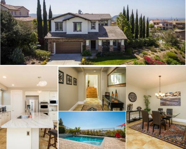 891 Antilla Way, San Marcos, CA 92078 (#180025947) :: Heller The Home Seller