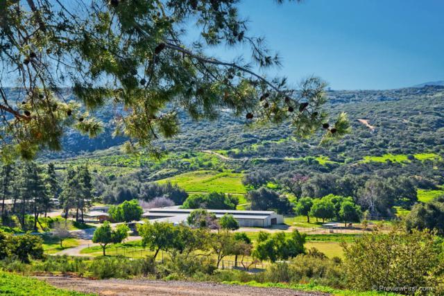 26131 Creek Hollow Drive, Ramona, CA 92065 (#180026085) :: Heller The Home Seller