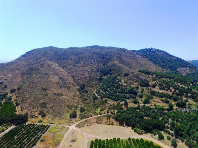 00 Pala Rd #1, Fallbrook, CA 92028 (#180026166) :: Ascent Real Estate, Inc.