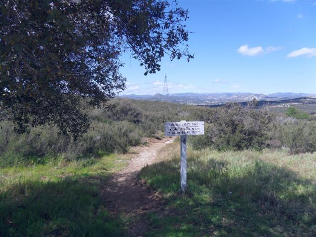 102.49 Acres Forest Gate Rd #6, Campo, CA 91906 (#180026351) :: The Yarbrough Group