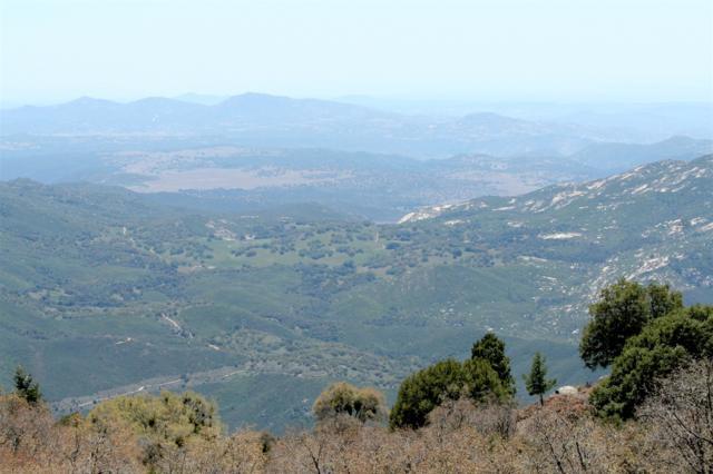 22213 Crestline Rd, Palomar Mountain, CA 92060 (#180026567) :: Keller Williams - Triolo Realty Group