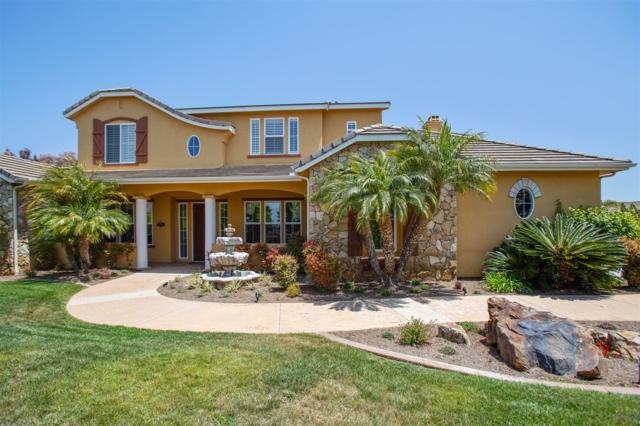 1601 Aryana, Encinitas, CA 92024 (#180026718) :: Neuman & Neuman Real Estate Inc.
