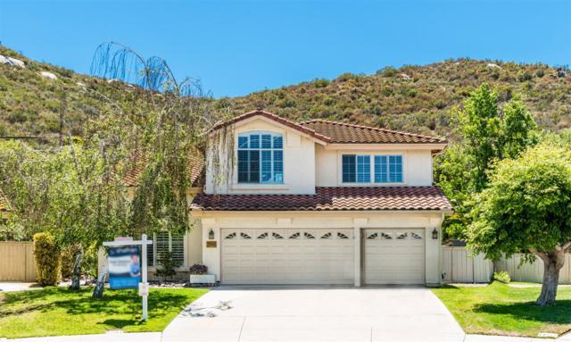 3196 Jamacha View Dr, El Cajon, CA 92019 (#180027147) :: Heller The Home Seller