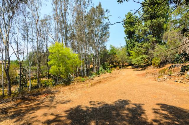 2860 Calmar Drive Vacant Lot 12, Escondido, CA 92029 (#180027383) :: The Yarbrough Group
