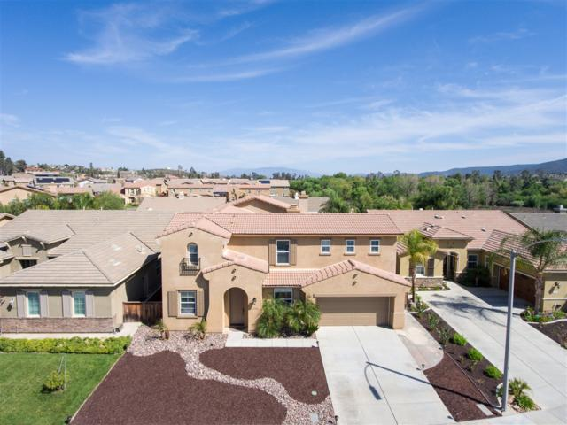 32548 Meadow Ridge Ln, Wildomar, CA 92595 (#180027399) :: Kim Meeker Realty Group
