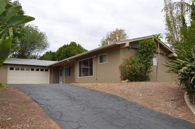 419 Alturas Road, Fallbrook, CA 92028 (#180027402) :: Heller The Home Seller
