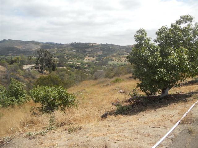 Cottontail Ln #36, Bonsall, CA 92003 (#180027635) :: Bob Kelly Team