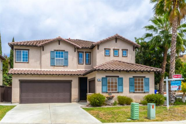 252 Azul Way, Oceanside, CA 92057 (#180027722) :: The Marelly Group | Compass