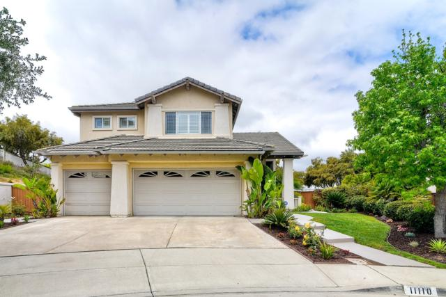 11110 Grape Fern Ct, San Diego, CA 92131 (#180027886) :: PacifiCal Realty Group