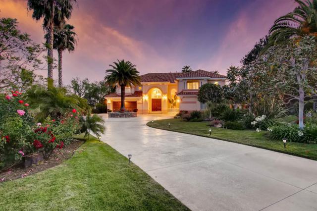 14327 Twin Lakes Ct, Rancho Santa Fe, CA 92067 (#180028081) :: The Yarbrough Group